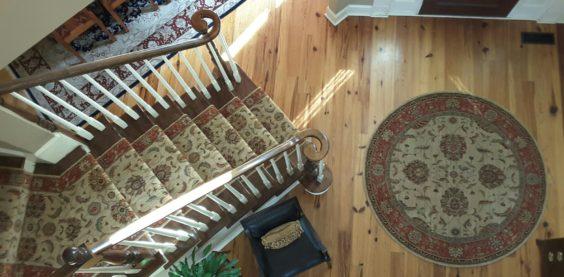 Portfolio Area Rugs I Oriental Rugs I Custom Rugs